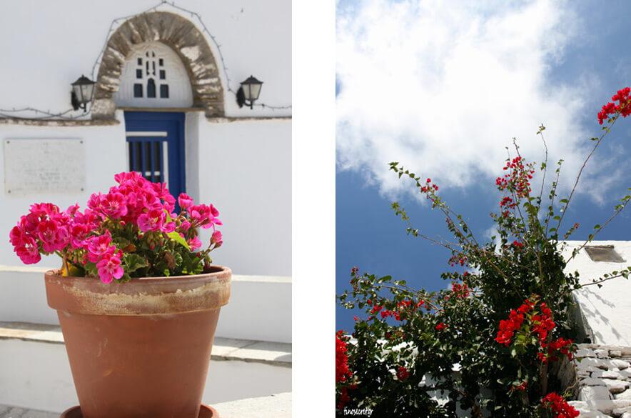ΤΗΝΟΣ Πρωτομαγιά λουλούδια TINOS PROTOMAGIA